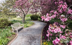 Landscape Design Inspiration at the Chicago Botanic Gardens