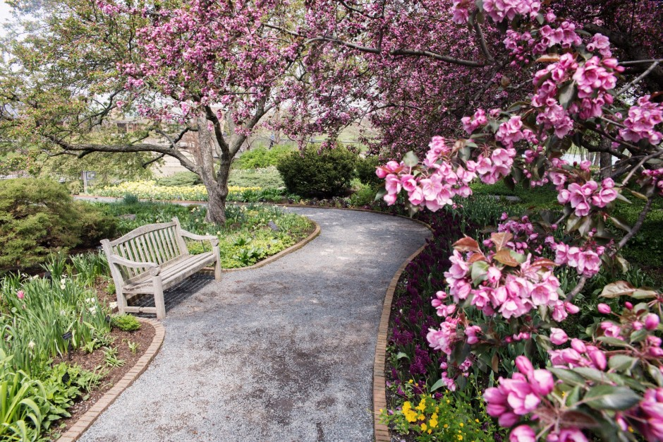crab apple tree landscape design at the chicago botanic gardens